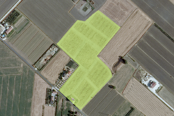 DBTR2013 - Area temporaneamente priva di vegetazione - (AUV_GPG)